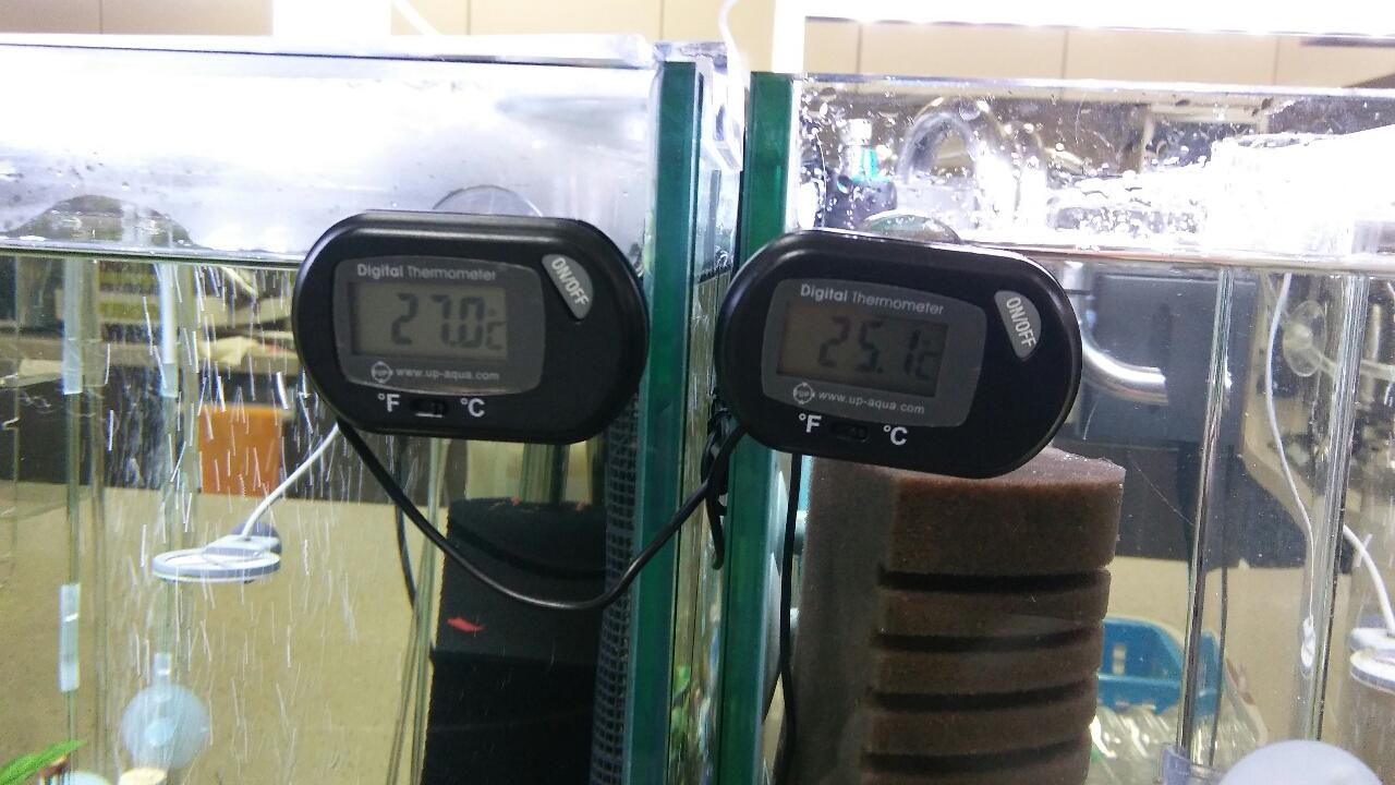수족관 디지털 수온계