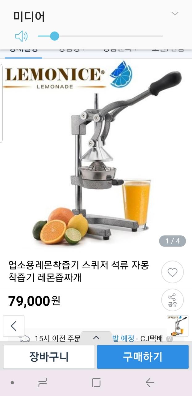 착즙기(과일)
