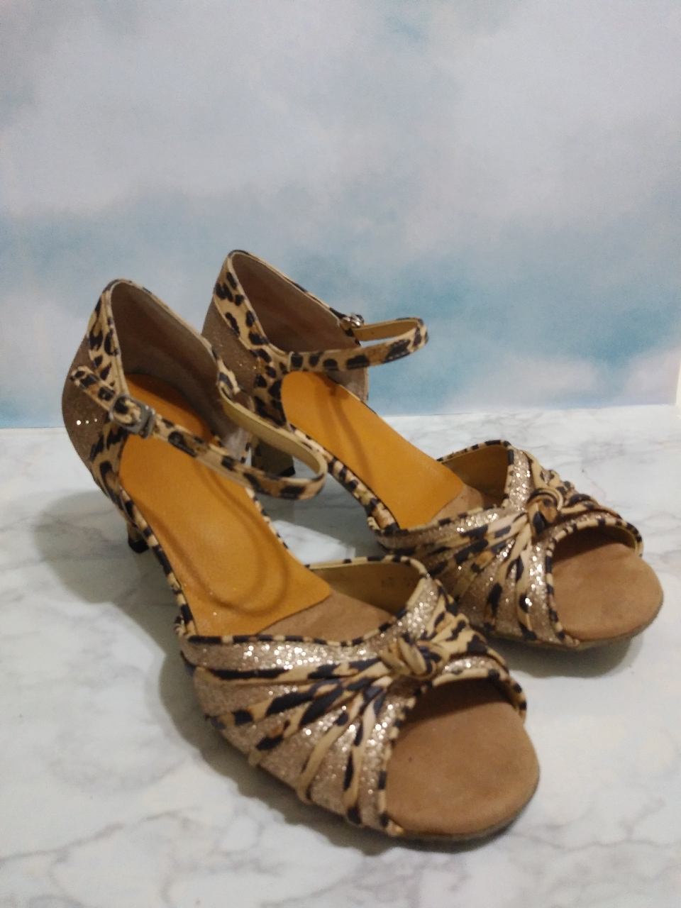shall we dance!? shoes