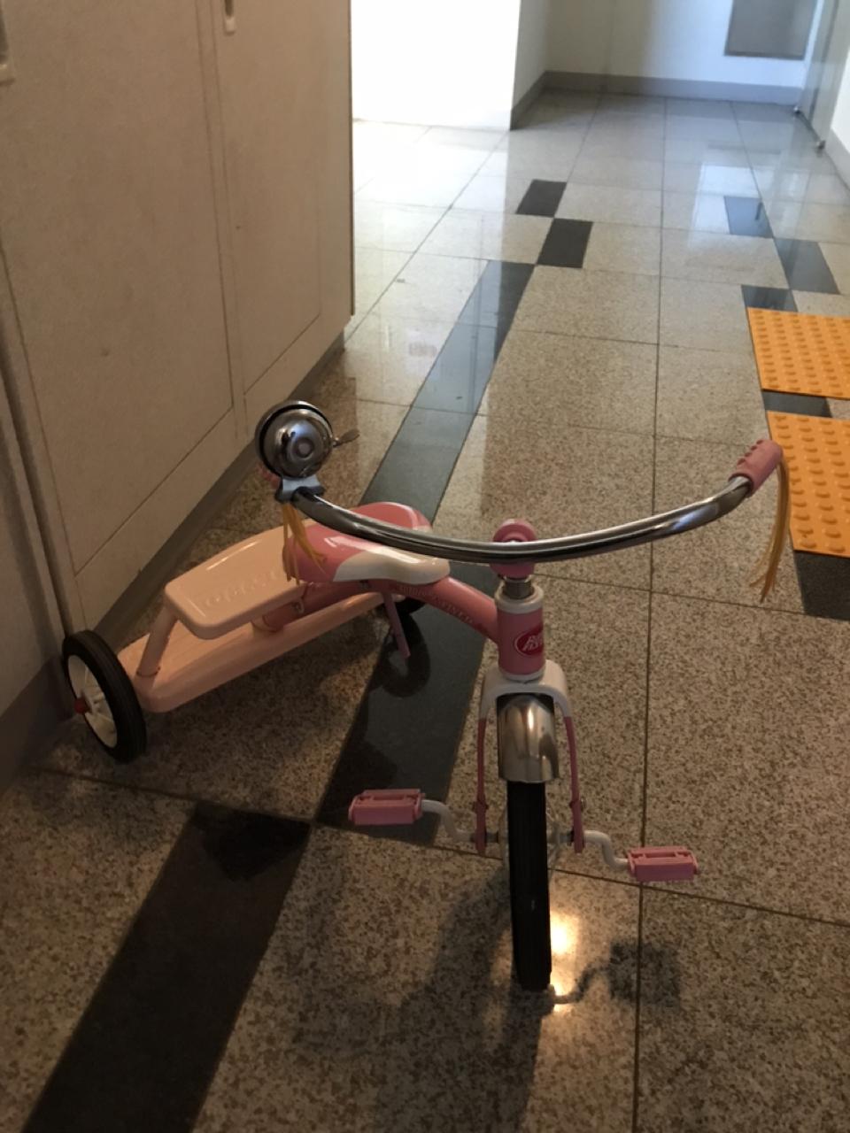 라디오플라이어 자전거