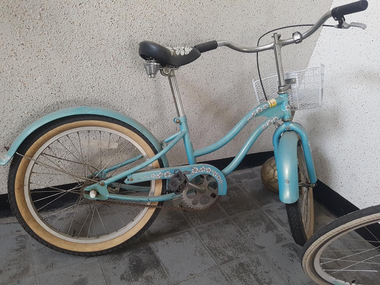 일렉트라 아동 자전거