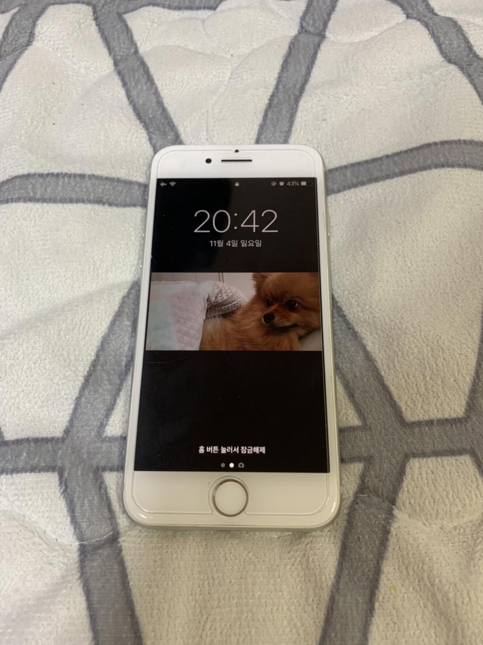 아이폰 8 실버 64G팔아요!̤̻!̤̻