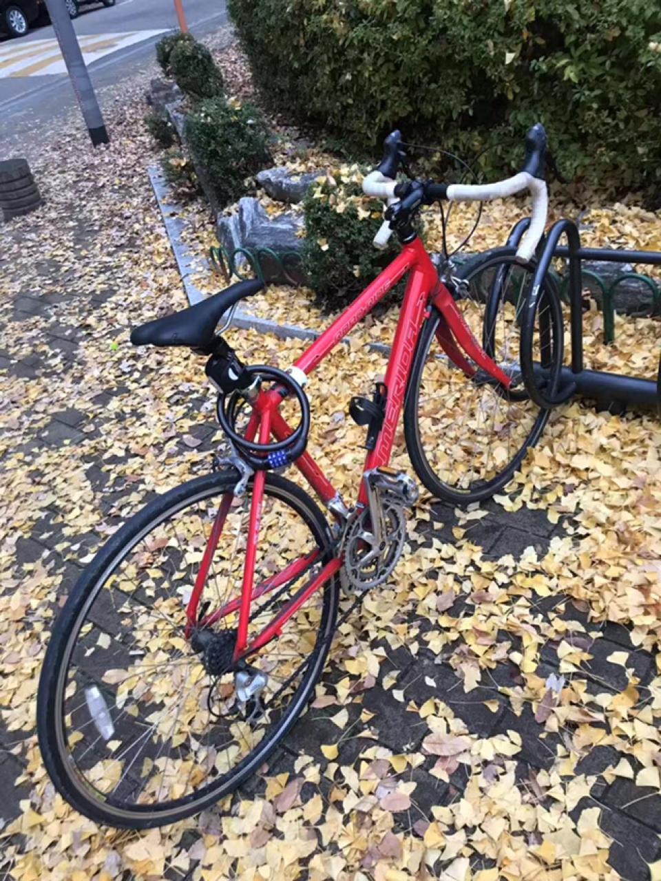 메르다 알톤 로드 자전거