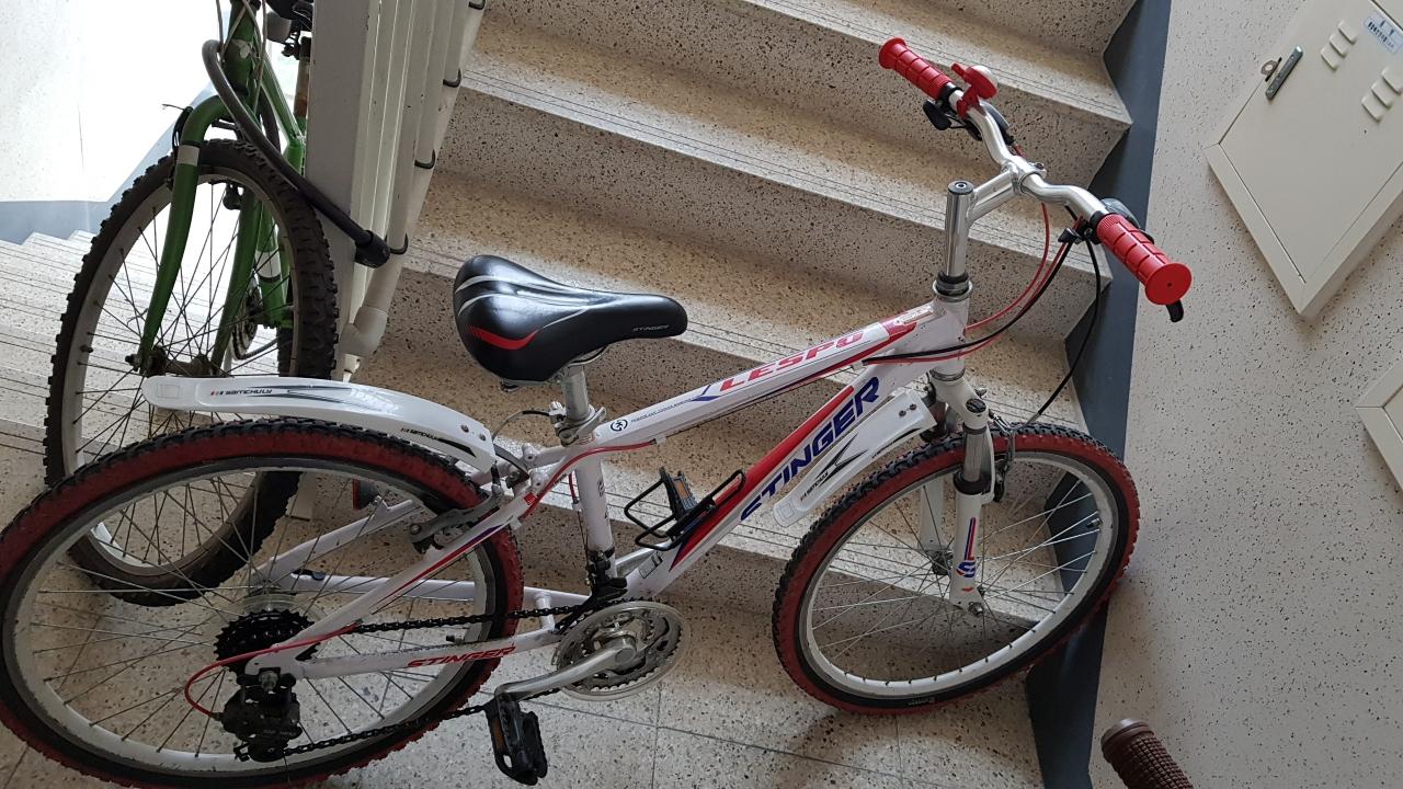 자전거 팝니다.