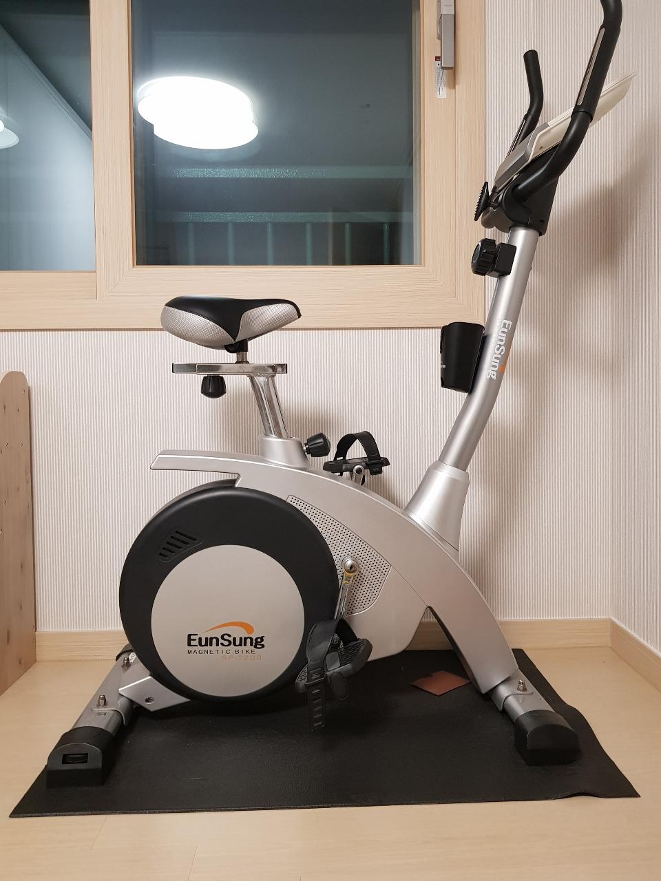 튼튼한 실내자전거. 은성실내사이클
