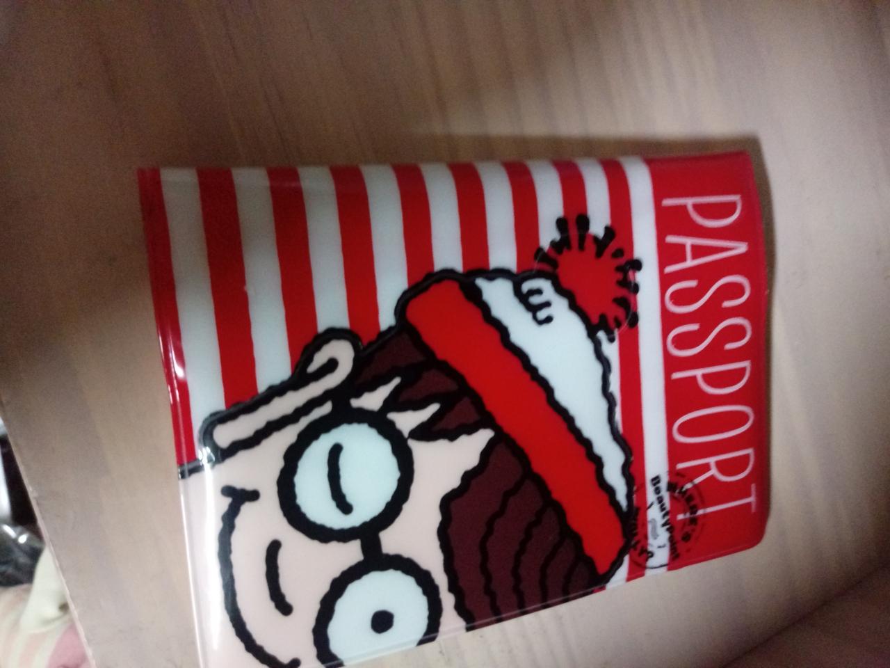 여권 케이스