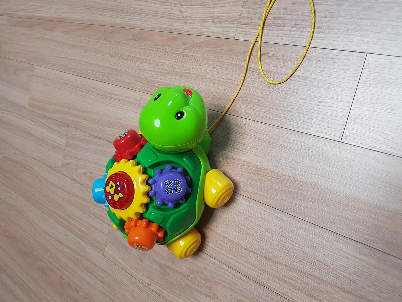 브이텍 거북이