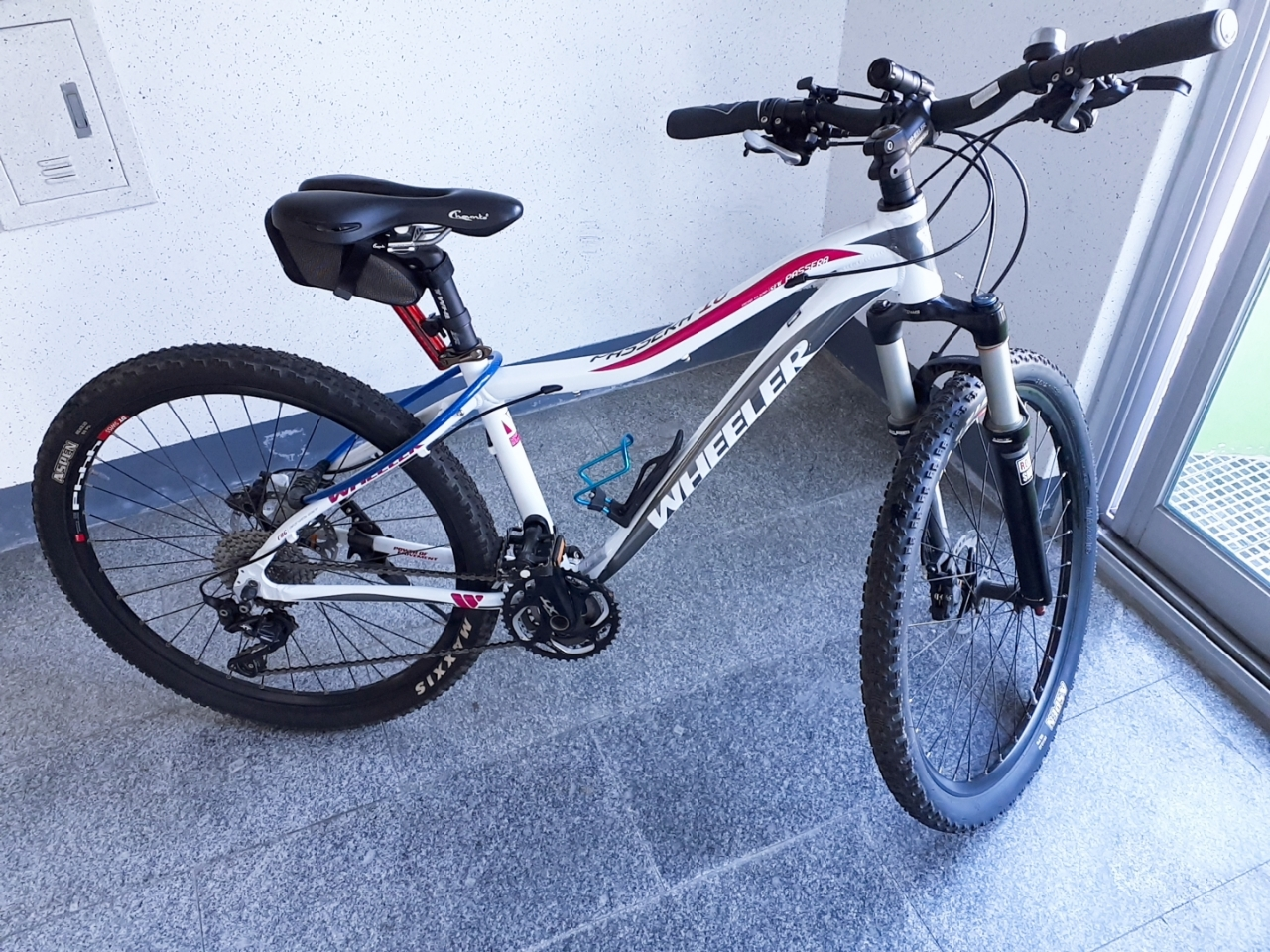 자전거 Wheeler Passera 10 SWF