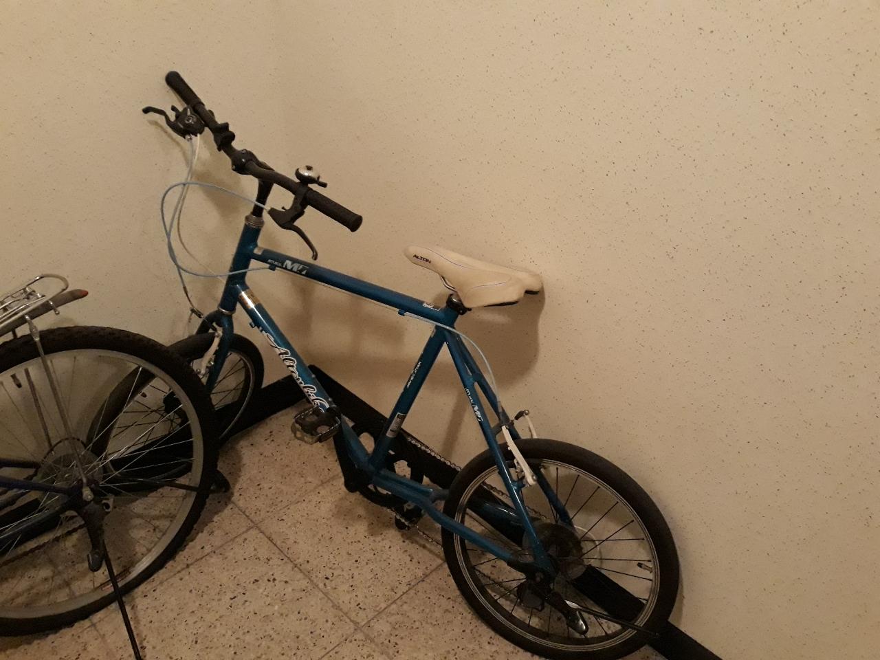 미니벨로 자전거, 그냥 자전거