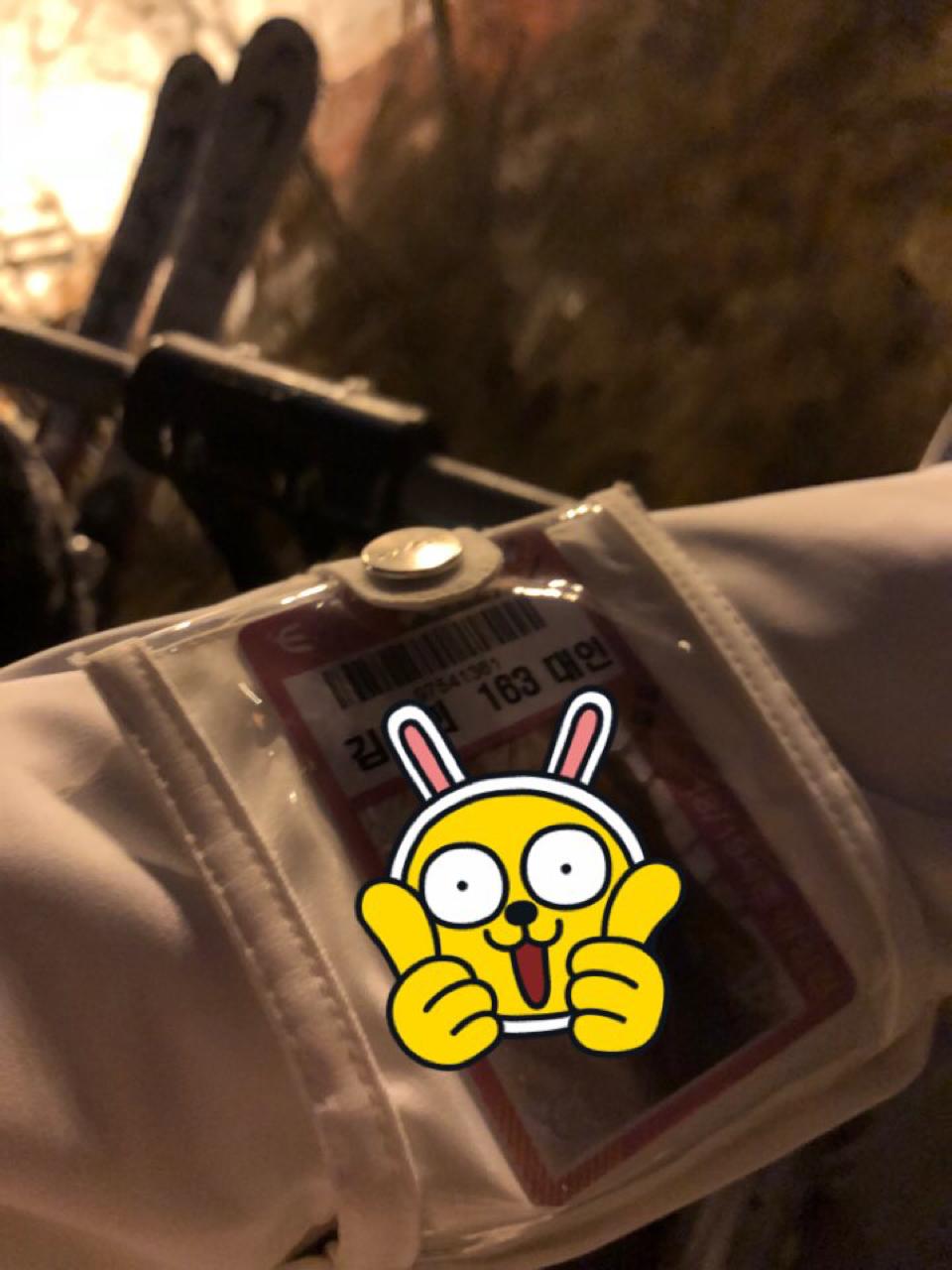 알펜시아 야간/심야 시즌권