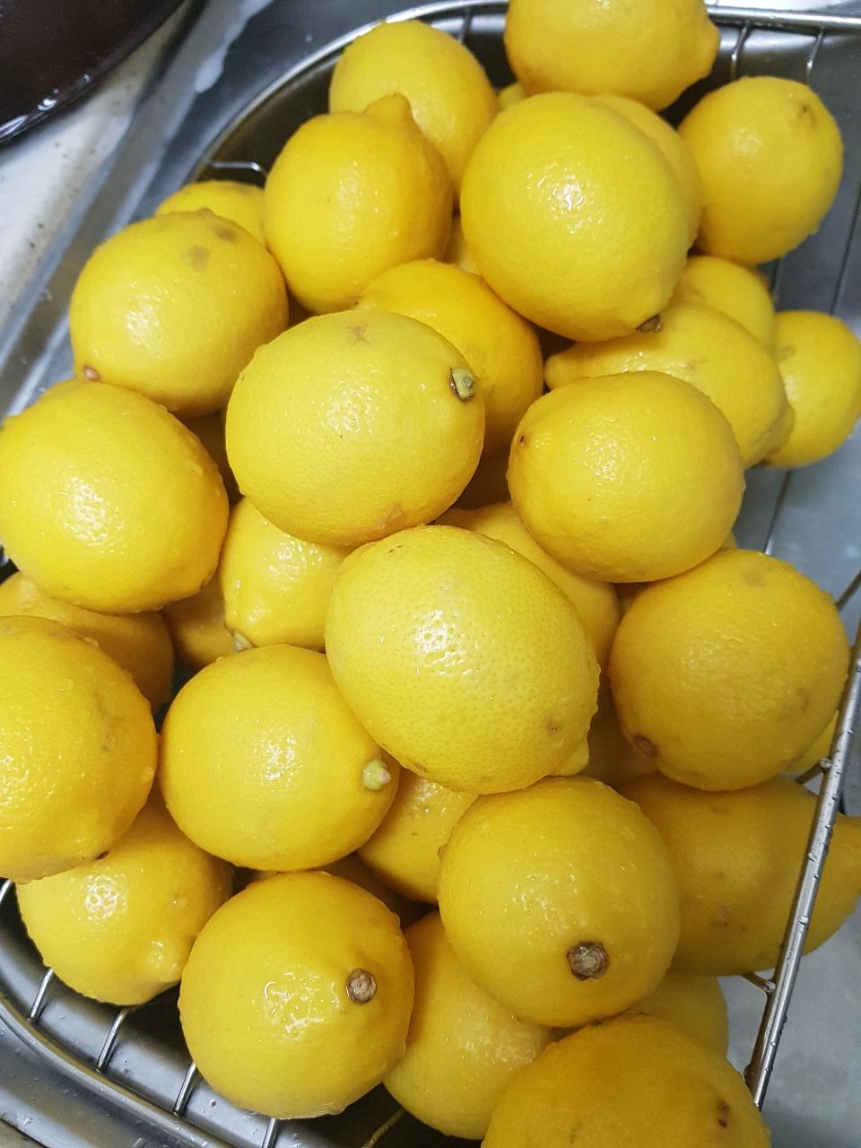 레몬 팔아요 (10개*3)