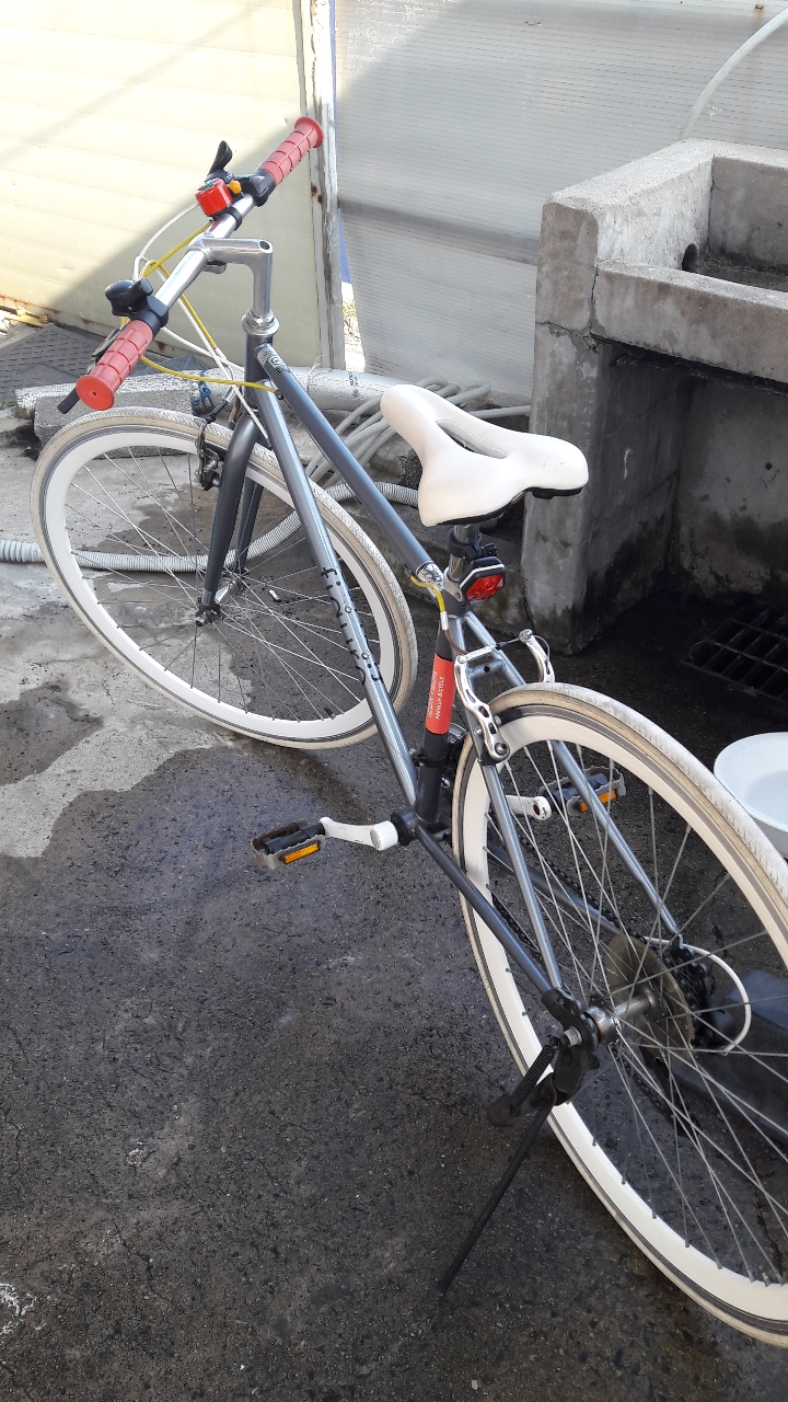 공용자전거가격내림