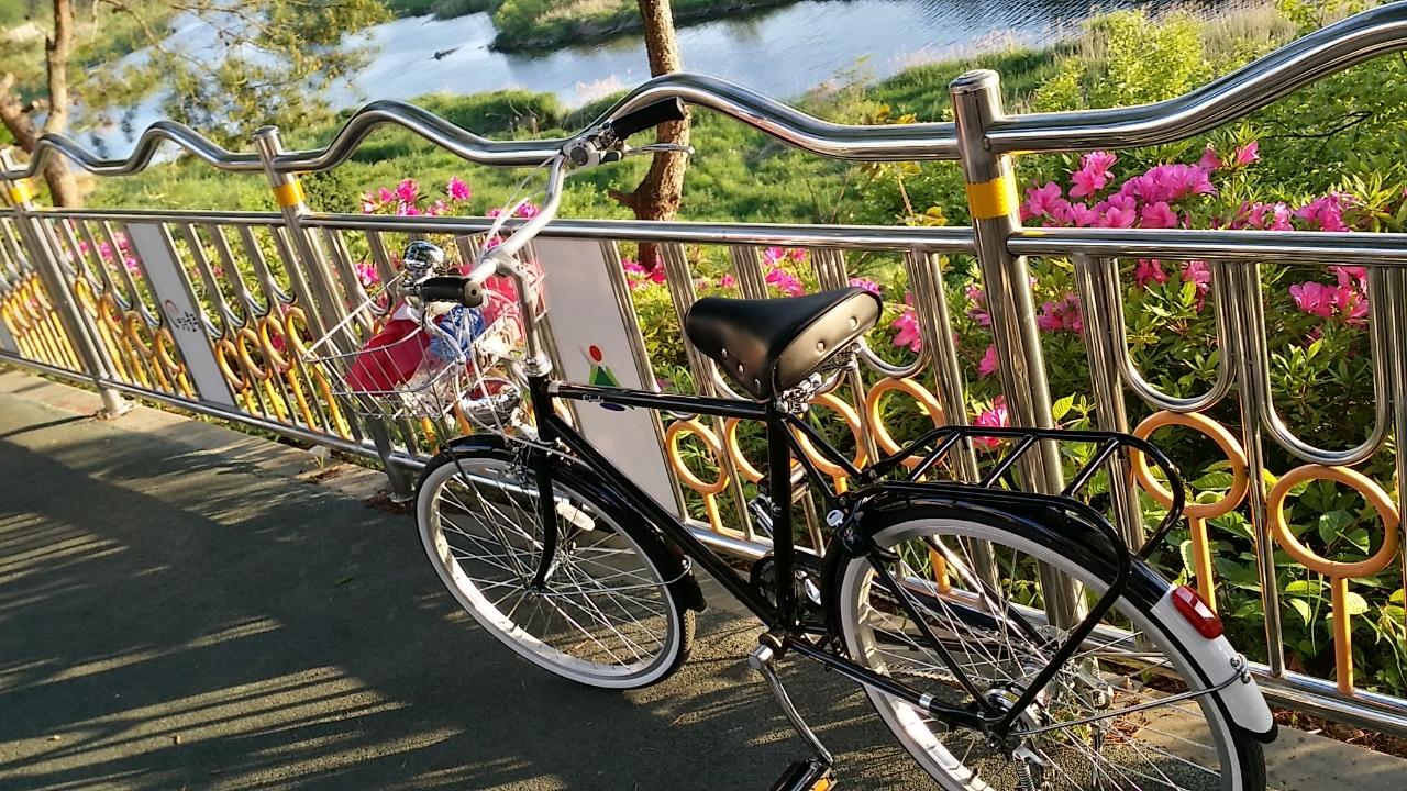 클래식자전거/자전거