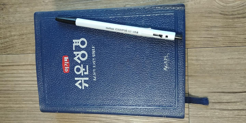 쉬운성경책