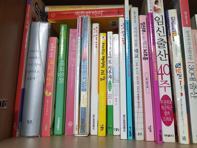 임신 출산 태교 유아발달 책
