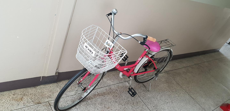 여성알톤자전거핑크