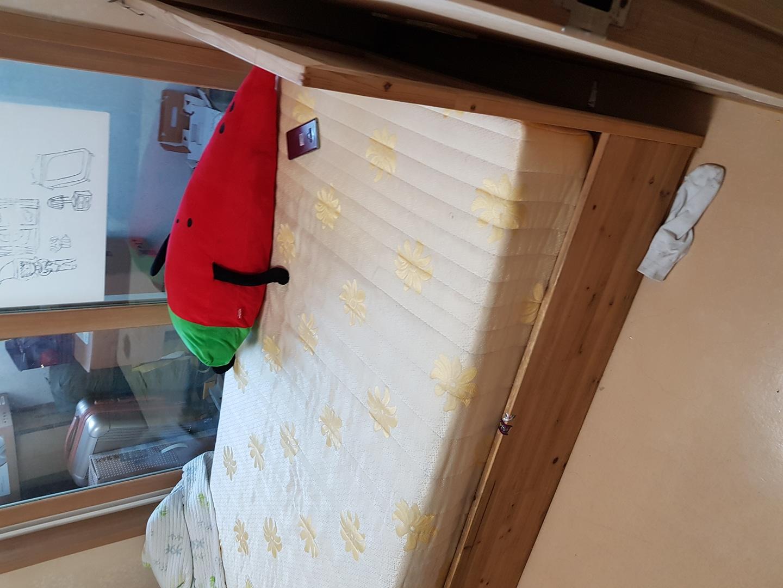 삼나무 침대