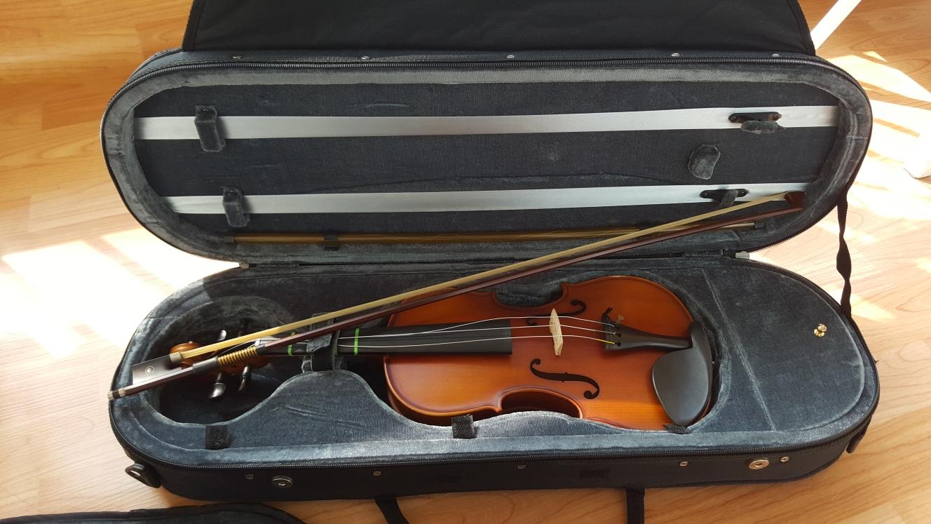 바이올린 케이스