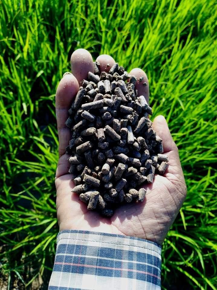 양산 수입 고급식물비료/베란다텃밭