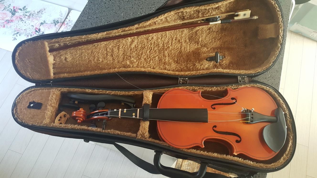 연습용 바이올린
