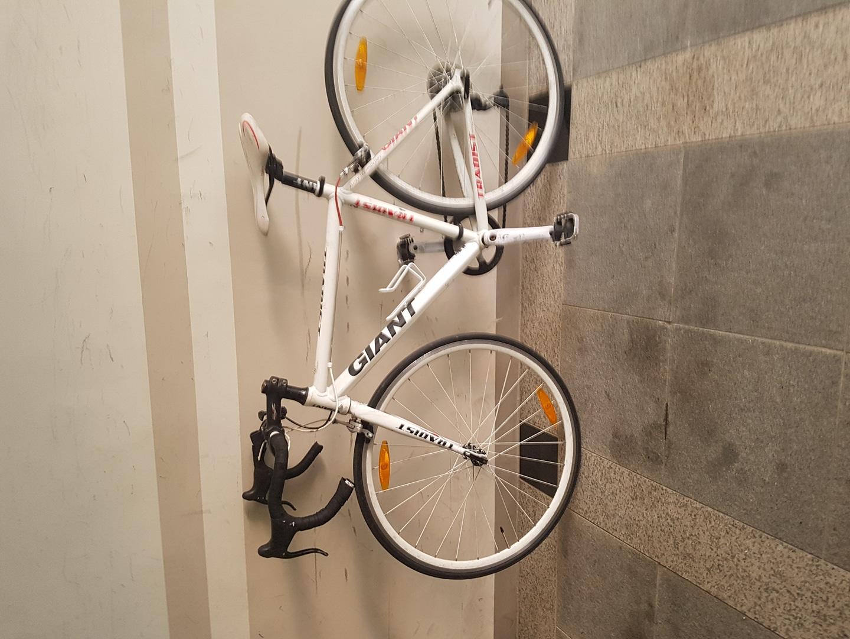 자인안트 자전거