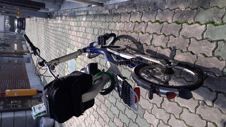 특별한자전거