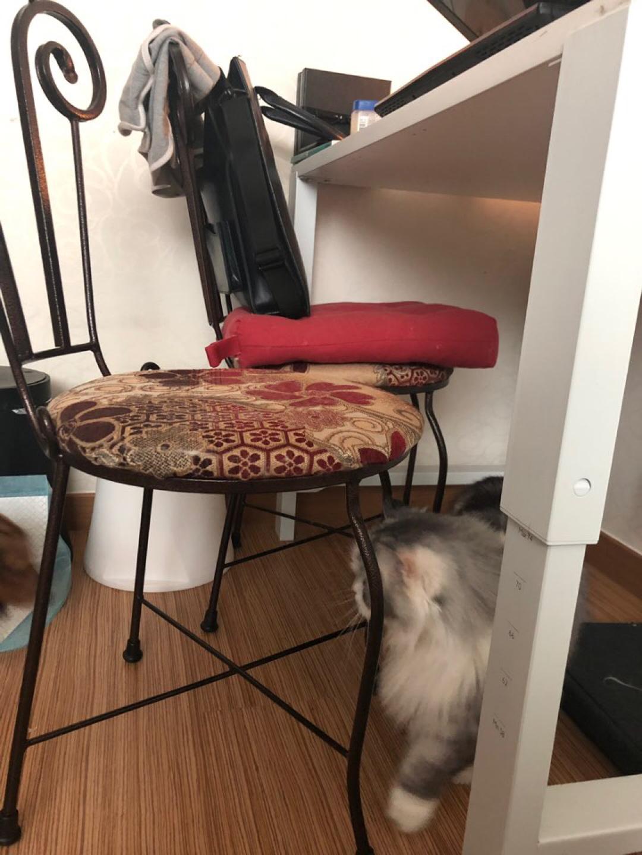 의자 2개 새상품