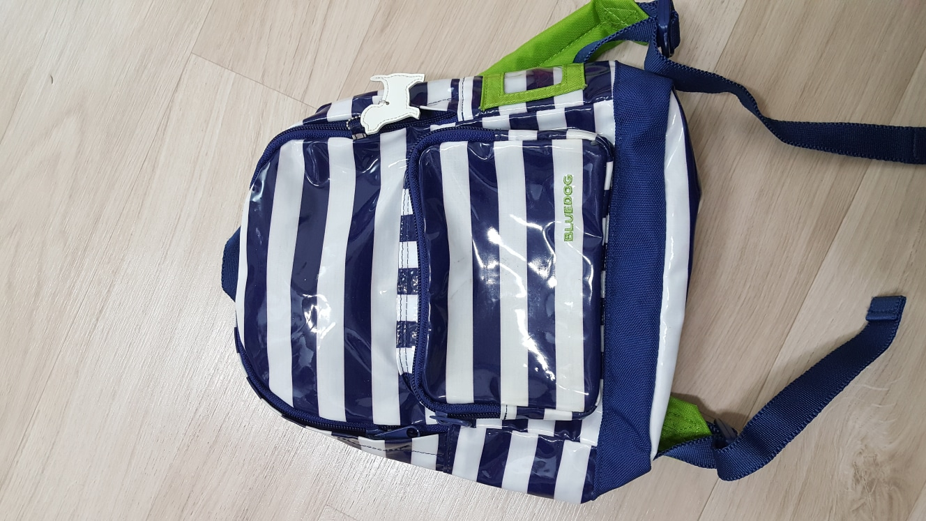블루독 가방