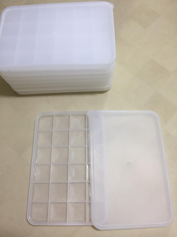 다진마늘 냉동보관통 8개