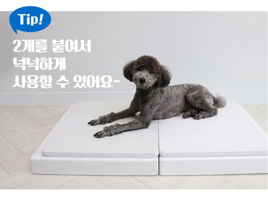강아지 대리석매트 (대리석아빠)中세트 1개+대용량 아이스팩2개