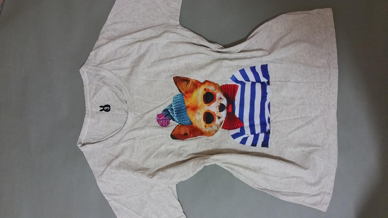 고양이 반팔티셔츠