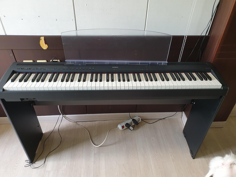 야마하 디지털 피아노