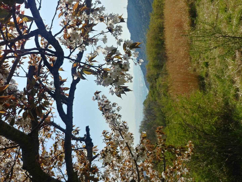 (~5/8 마감)근린공원 생태안내자 양성과정(양산시 지원프로그램)