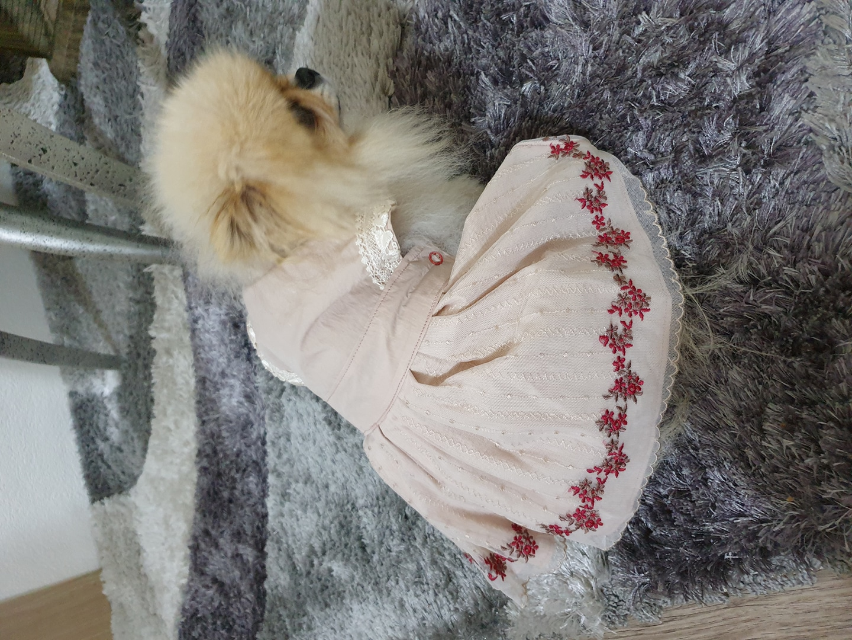 러블리 강아지원피스