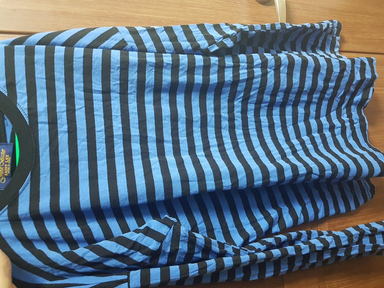 파란색 줄무늬 1