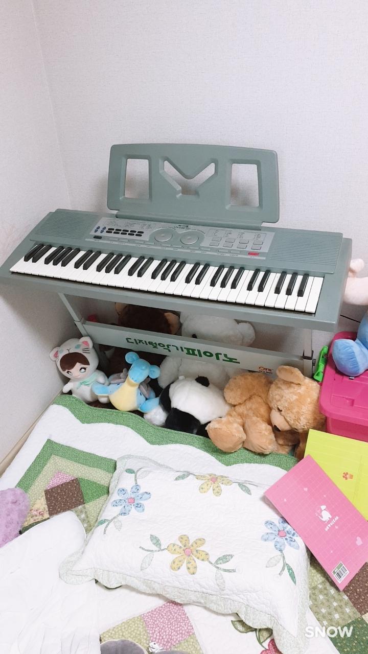 디지털악기 피아노