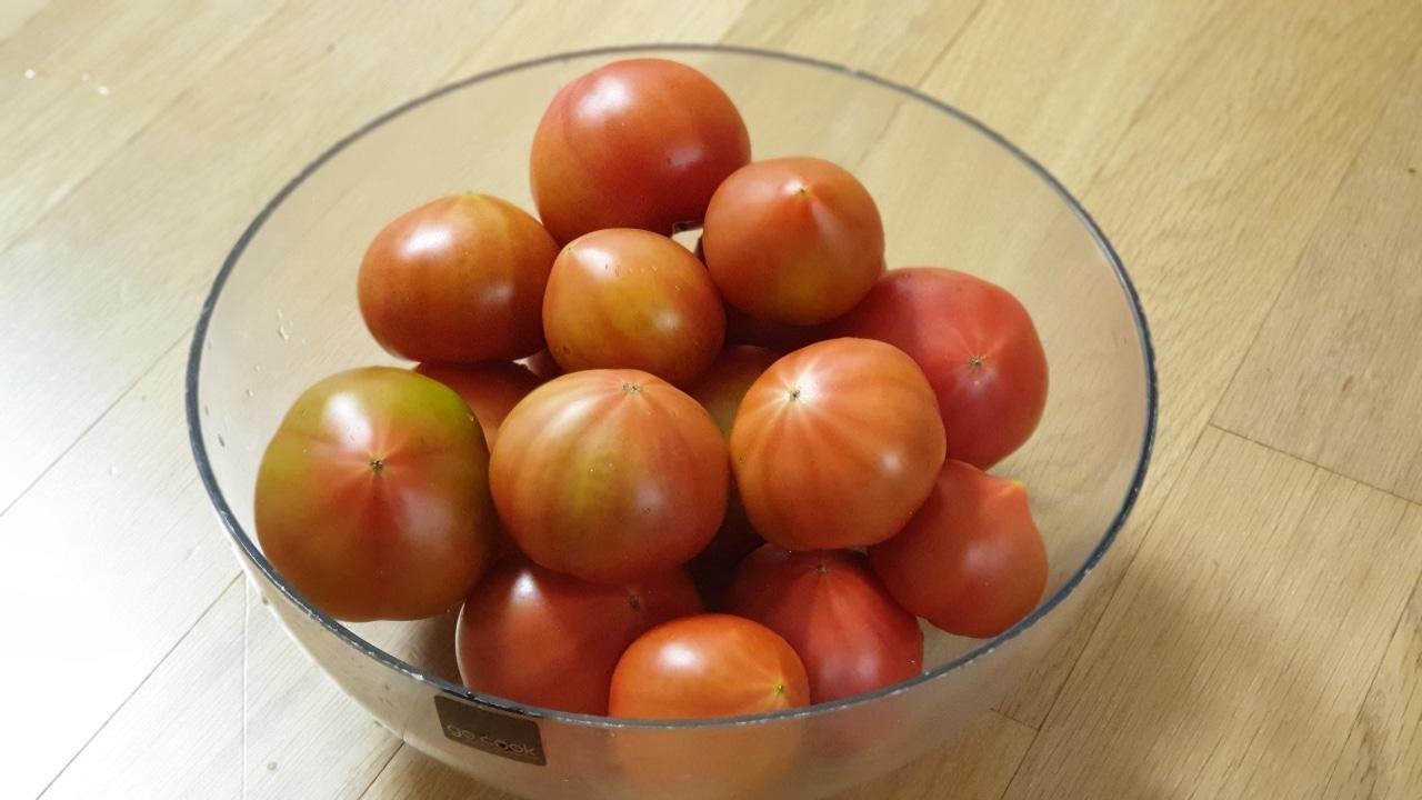 대저 찰토마토 2kg가량