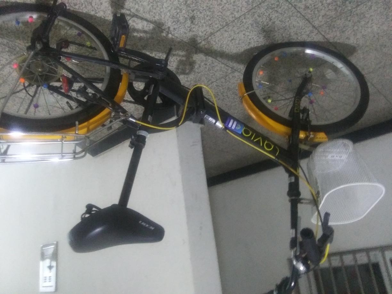성인자전거