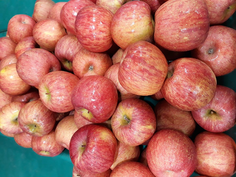 ★ 맛있는 사과 사과즙 제철과일 팝니다 ★
