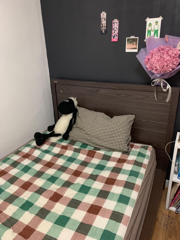 장인가구 침대 , 옷장