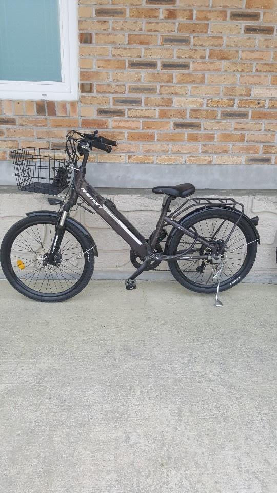 전동자전거