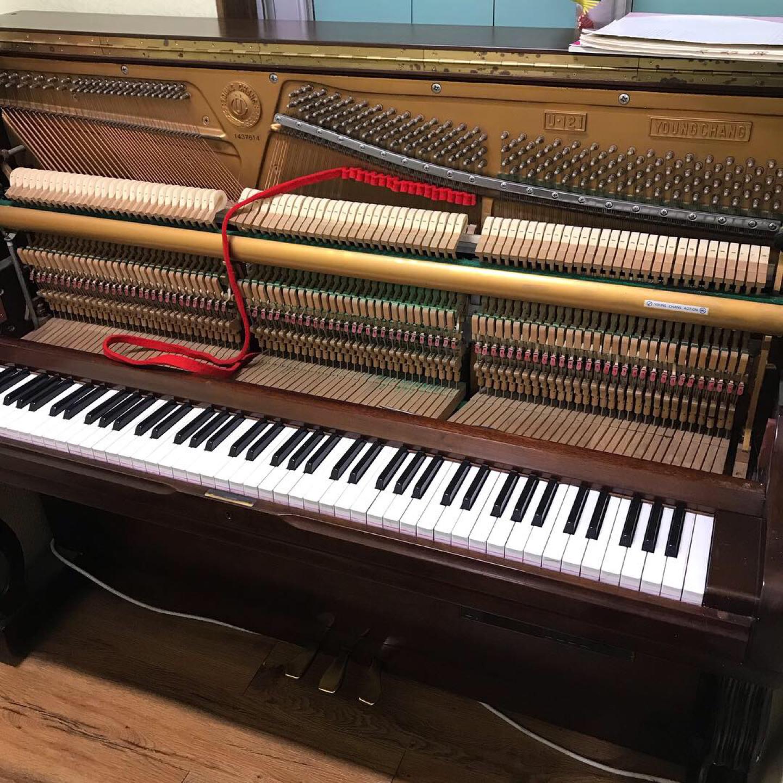 피아노 운반&조율 합니다.