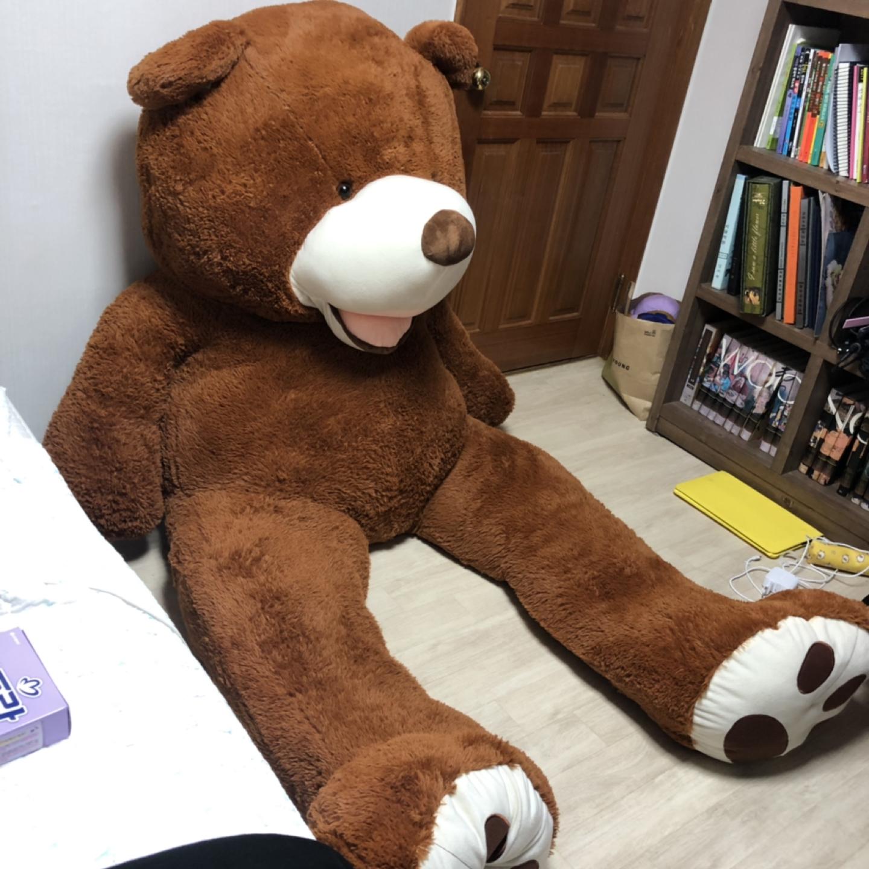 2.6m 대형 곰 인형 팔아요!
