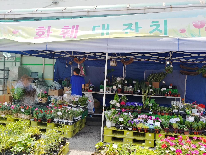 상하동 꽃집♥ 화훼 대잔치