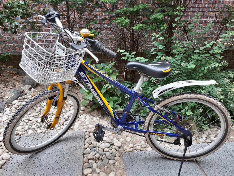 삼천리 22인치 스팅거 SF 아동용 자전거
