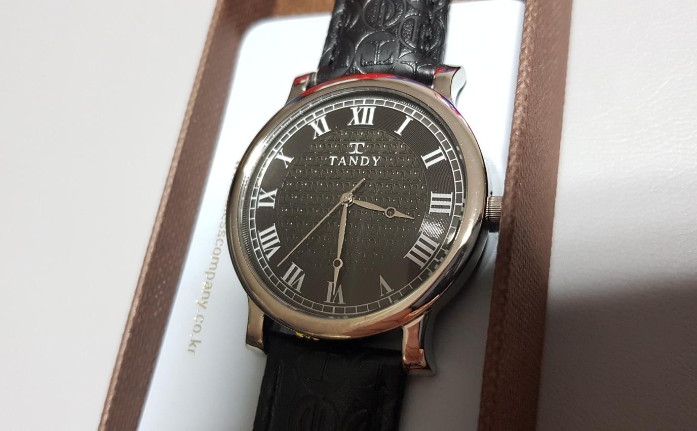 탠디 남성 시계