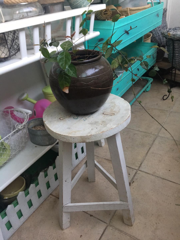화초 +항아리+의자 (화분받침)
