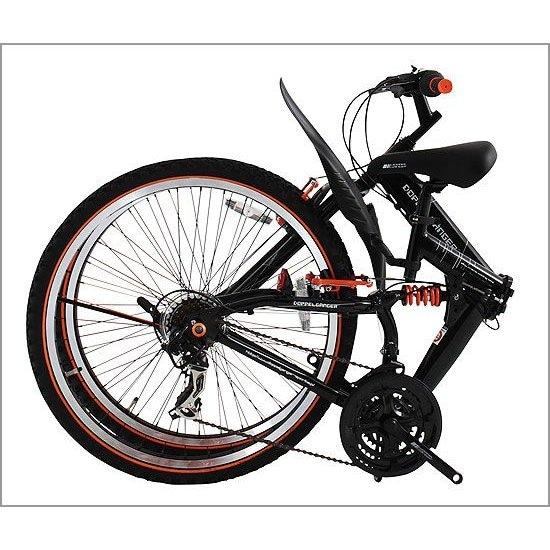 남성 자전거 도플갱어
