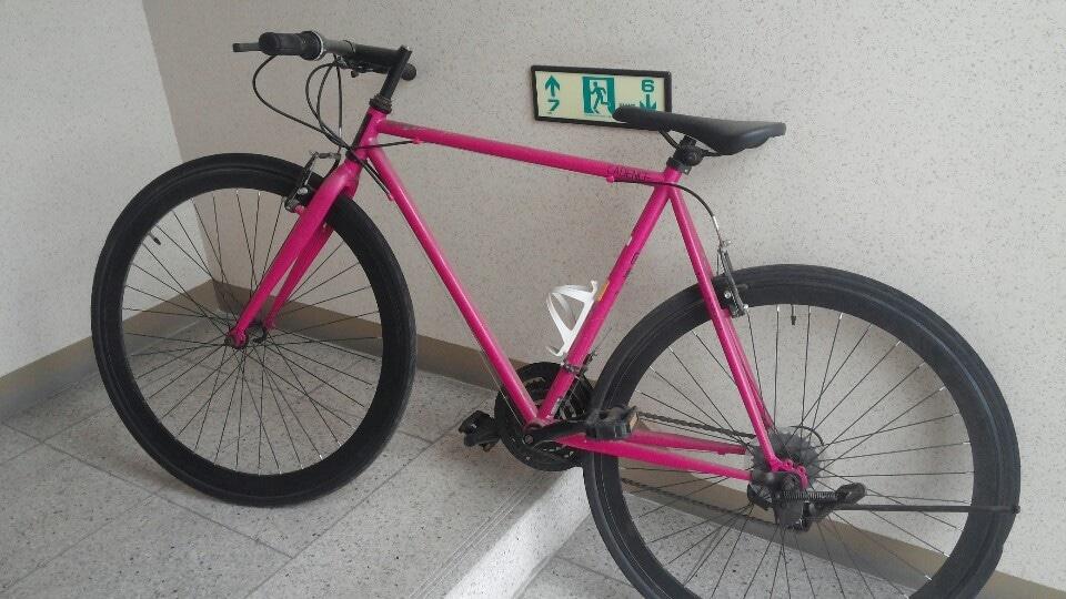 성인자전거.자전거