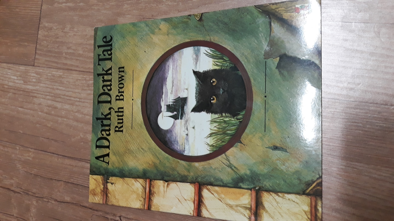 문진 영어동화책